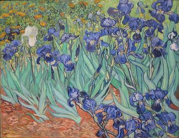 777px-Irises_by_Vincent_Van_Gogh_in_GettyCenter.jpg